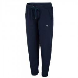 Spodnie 4F H4L20SPDD012 31S